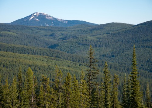 kootenai-national-forest